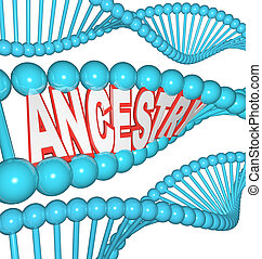 ascendência, palavra, ADN, pesquisa, seu, genealogia,...