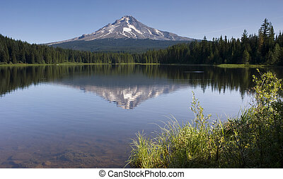 Mount Hood - Trillium Lake