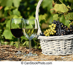 harvest and wine - glasses of wine and grappes in basket
