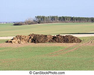 Dirt pile in a farm field