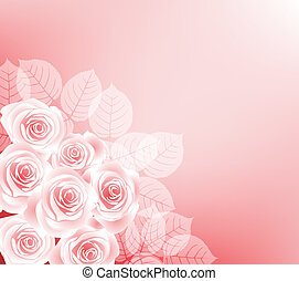 roses - background with roses