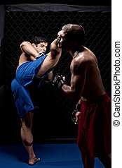 Mixed martial artists fighting