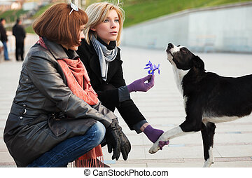 Women and a dog - Two young women with a stray dog