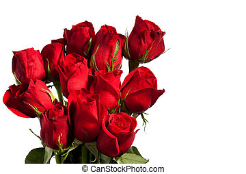 Dozen Red Roses - Dozen red roses isolated on white...