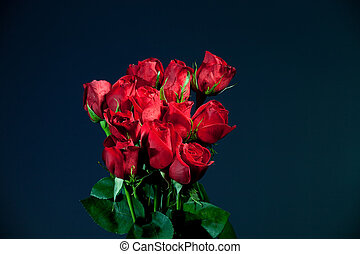 Dozen Red Roses on Blue - Dozen red roses over a dark blue...