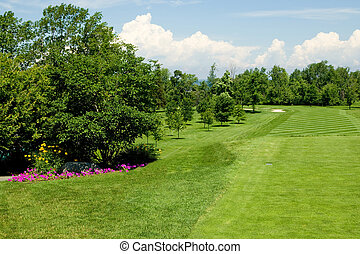 Fairway - A long golf course fairway on a beautiful summer...