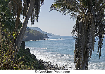Tropical Pacific Ocean coast in Nayarit, Mexico