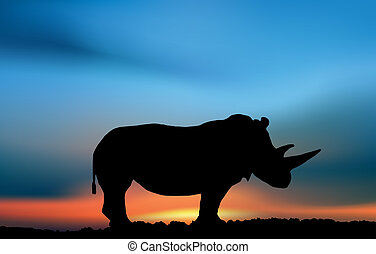 Rhino in the savanna sunset. Safari illustration art