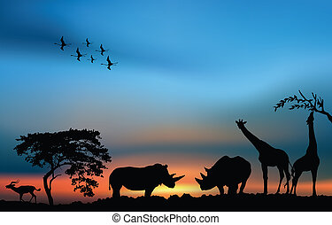 African sunrise with rhinos, giraffes and antelope - African...