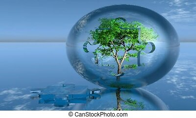 tree growing in glass sphere