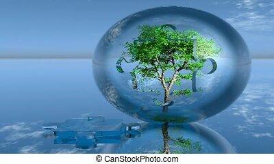 tree growing in glass sphere