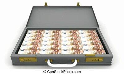 Euros in a briefcase