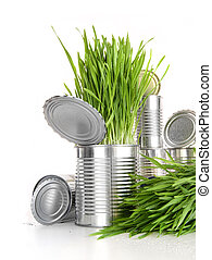 Wheatgrass in aluminum cans on white - Wheat grass in...