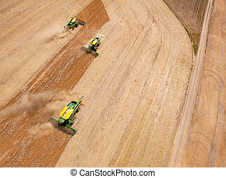 Three Combines in Grain Field - Three harvesters working in...