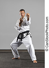 martial arts master - An image of a martial arts master