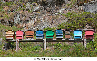 Small apiary in the swiss alps