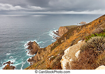 Ocean coast in Big Sur, California, US