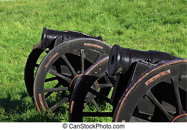 Fort Ross canons