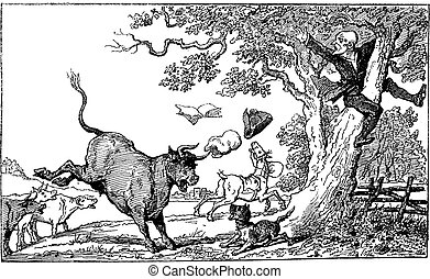 Dr. Syntax chased by a bull vintage engraving. -...