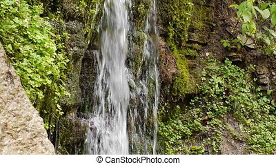 Small waterfall in autumnal forest - Stream of flowing water...