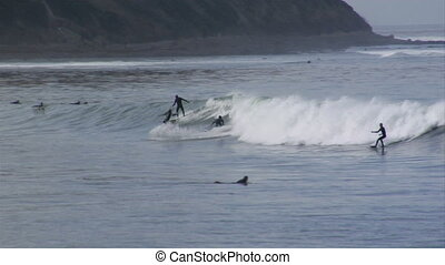 surf cove 3 guys - 3 or 4 surfers take off on the same wave