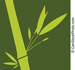 Green bamboo. Vector illustration.