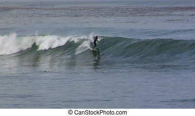 surf cove long ride - surfers at cove