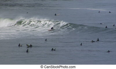 surf-cove-longboard-ride2 - Popular surf spot yields a...