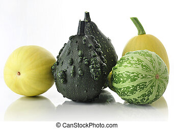gourds - yellow and green decorative squashes