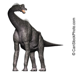 brachiosaurus dinosaur full view - Brachiosaurus Full body...