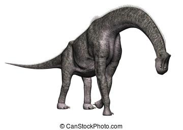 Brachiosaurus, Dinosaurio, ambulante