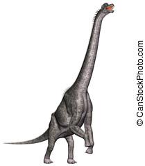 brachiosaurus dinosaur standing - Brachiosaurus standing on...