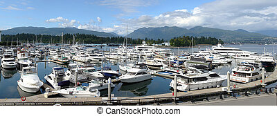 Luxury yachts in a marina near Stanley park, Vancouver BC -...
