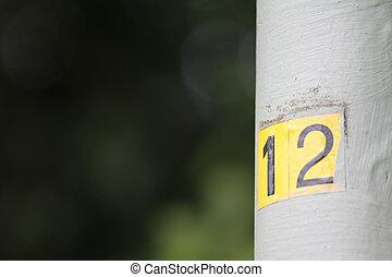 12, 数
