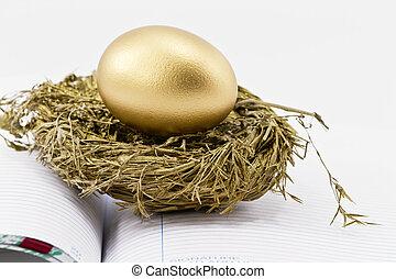 Financial Nest Egg on Open Ledger - On an open ledger, a...