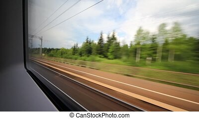 View of the wood and environment from a window of quickly going train