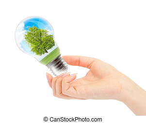 Environmental concept Renewable Energy - Light bulb with...