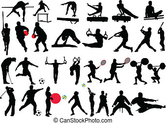 different sport collection - vector - illustration of...