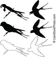 swallows collection - vector - illustration of swallows...