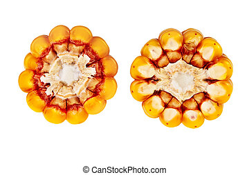 Corn cob cross section isolated over white background.
