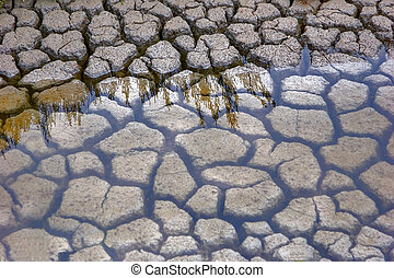 Shallow water - Clayed cracked bed of a small brook