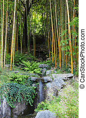 A stream in a bamboo grove - Traditional Japanese park on...