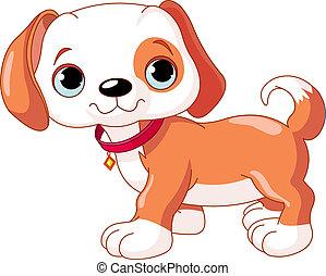 Cute Puppy walking - Cute walking puppy, wearing a red...