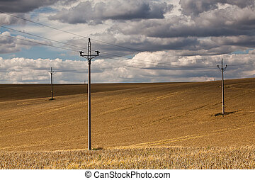 Power-transmission poles on the empty barley field in summer