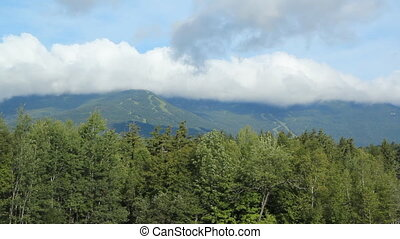 Summer skihill - View of ski-hill in the distance Summer in...