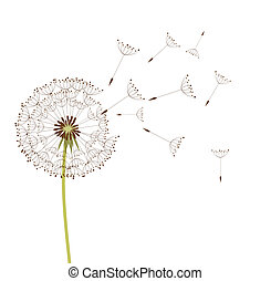 Dandelion in the wind. Vector background