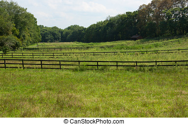 Wooden fences on the farmland - Wooden fences dividing the...