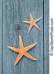 star fish on rustic wood
