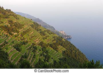 Cinqueterre La Spezia, Liguria, Italy, panoramic view