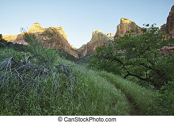 Three Patriarchs in Zion Canyon National Park, Utah